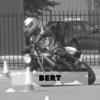 Competitie-2018 Bert